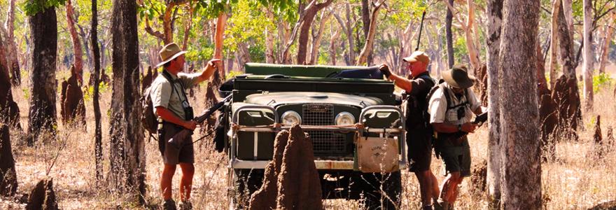safari de chasse